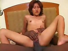 Petite Asian Wrecked By Big Cock