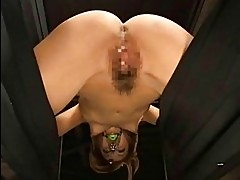 Japanese AV Model licks cock
